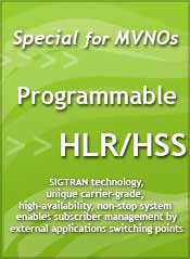 Programmable HLR/HSS - LeibICT